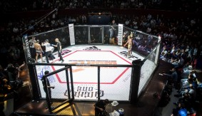 France Makes History as MMA Cage, Unified Rules Used for First Time