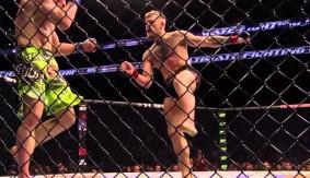 Video – UFC 194: Robin Black Breaks Down Jose Aldo vs. Conor McGregor