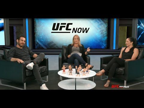 Top 5 Hardest Hitters in UFC from Kenny Florian & Jessica Penne on 'UFC Now'