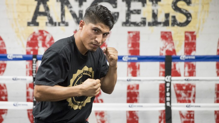 Mikey Garcia & Robert Garcia Answer Fan Questions Ahead of Showtime Boxing