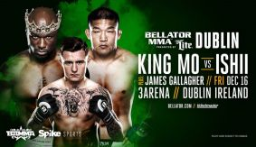 Fights Updated for Bellator 169 & BAMMA 27 on Dec. 16 in Dublin