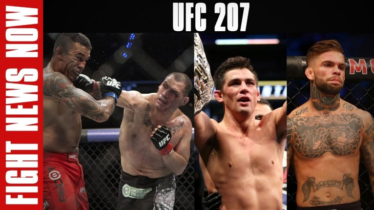 UFC 206 Thoughts, UFC 207: Cruz vs. Garbrandt & Werdum vs. Velasquez 2 on Fight News Now