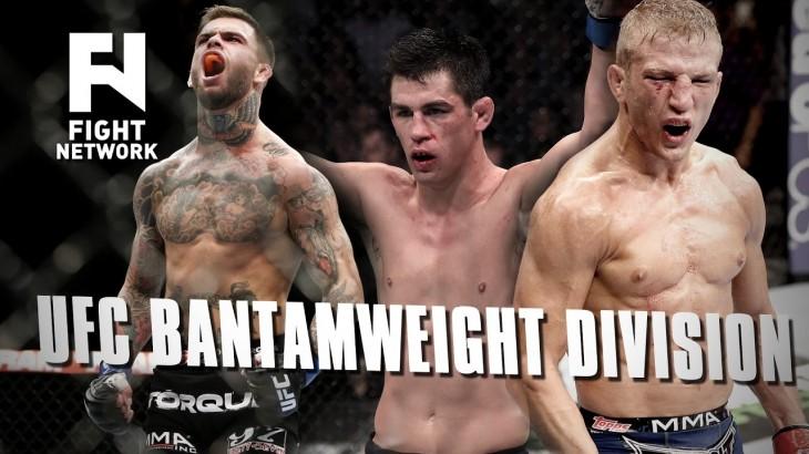 UFC Bantamweight Division: Cody Garbrandt vs. Dominick Cruz or T.J. Dillashaw