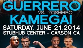 Guerrero-Kamegai Media Conference Call Transcript & Audio