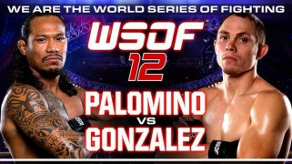 Four Undercard Bouts Added to WSOF 12 on Aug. 9 in Las Vegas