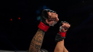Videos – WSOF: Palomino vs. Gonzalez Full Fight Highlights