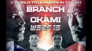 Quick Shots – WSOF 15: Branch Stops Okami, Gaethe Wins