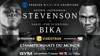 Stevenson vs. Bika Media Conference Call Transcript