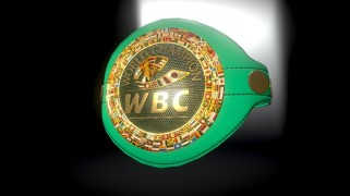 An Incredible 3D Model of WBC Emerald Belt