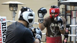 Robert Guerrero Training Camp Quotes & Photos