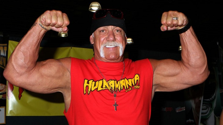 LAW July 27 Update – More Comments from Hulk Hogan Surface