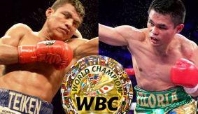 Boxing_Poster_WBC_RomanGonzalez_BrianViloria