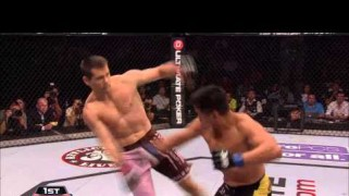 Video – UFC Fight Night 48 Free Fight: Le vs. Franklin
