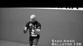 Video – TheSHOOT: Bellator 136: Saad Awad