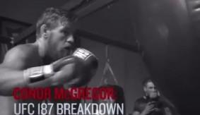 Video - UFC 187: Conor McGregor Breaks Down Title Fights